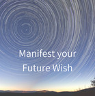 Manifest your Future Wish.jpg