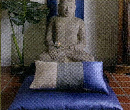 Mediation Pillow Water.jpg
