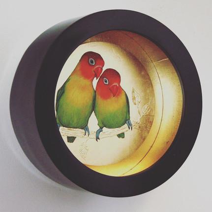A Pair of Love Birds