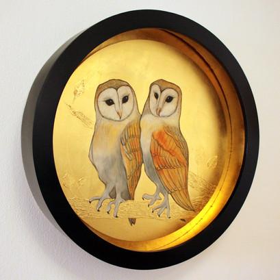 A Pair of Barn Owls