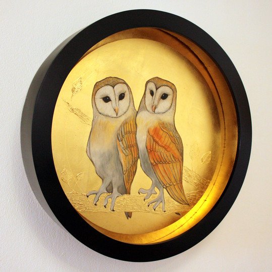A Pair of Barn Owls
