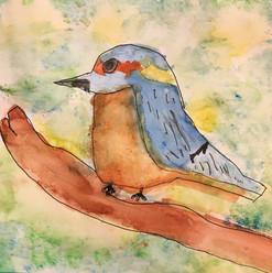 Beautiful bird in watercolour_edited.jpg