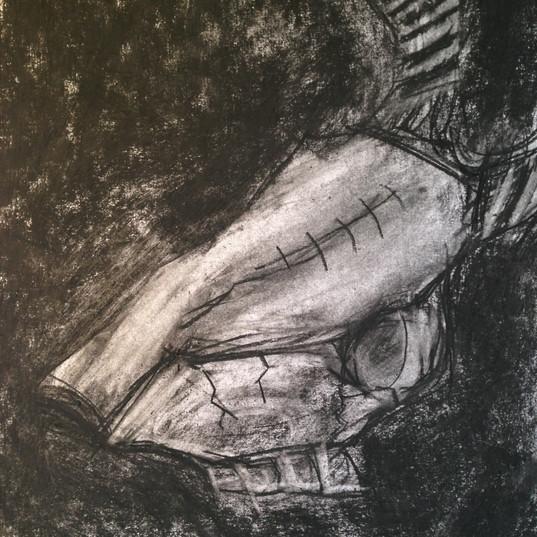 Deer's skull in charcoal