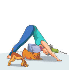 yoga_downward dog.jpg