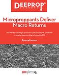 Zeeospheres-Deeprop White Paper-cover
