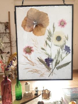 Tableau composée de fleurs séchées