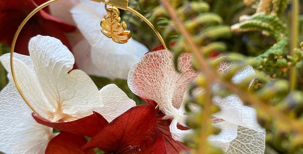 Collection Hortensias