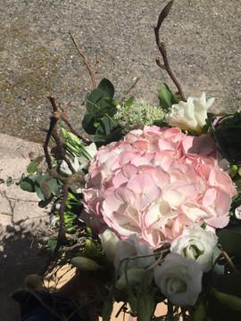 Hortensia rose poudré
