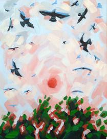 Detroit River Hawk Watch by AlexGilford - Detroit, United States of America