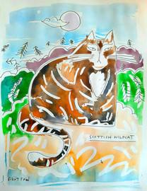 Scottish Wildcat by Burnt Paw - Edinburgh, Scotland