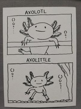 Axolotl by Jessica Goodfellow - Bergen, Norway
