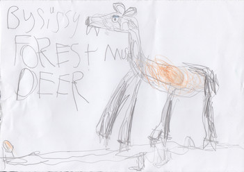 Sissy's Forest Musk Deer by Sissy Duff (6 years old) - Edinburgh, Scotland