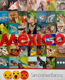 En la escala de las especies endémicas by Laura Contreras - Mexico