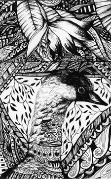 Nene (Hawaiian goose) by Yula (Robin) Kim -  London, UK