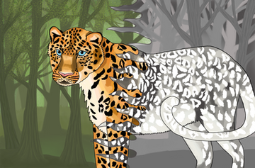 Leopard by Katherine Townsend -  Edinburgh, Scotland