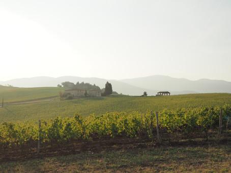 Nasce Valdisieveturismo.it il portale del turismo della Val di Sieve nella Montagna Fiorentina