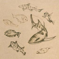 fish and spaceship 1