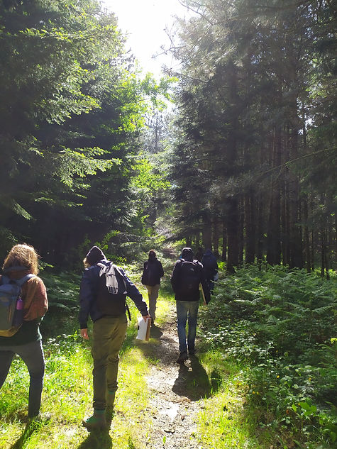 Bagno di foresta TeFFIt.jpg