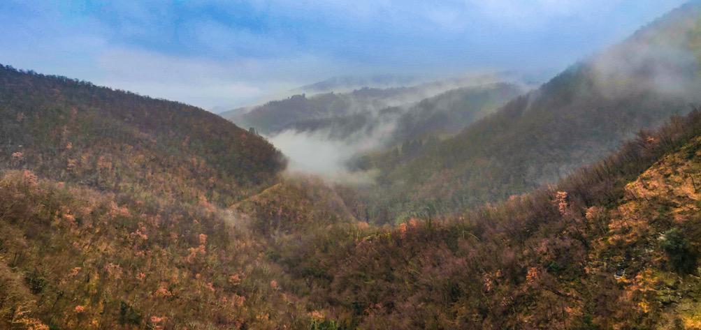 la valle dell'Argomenna