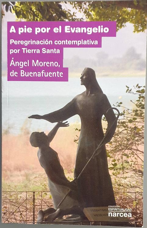 A pie por el Evangelio. Peregrinación contemplativa por Tierra Santa | Moreno, Á