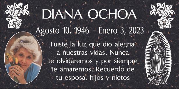 Diana Rocha PS.jpg
