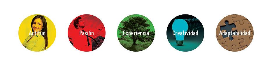 Valores Marcatel: Actitud, Pasión, Expriencia, Creatividad, Adaptabilidad