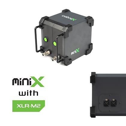 miniX IN
