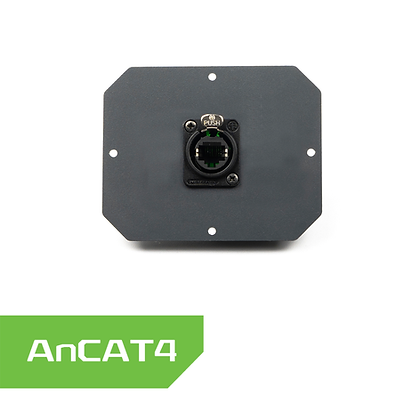 AnCAT4