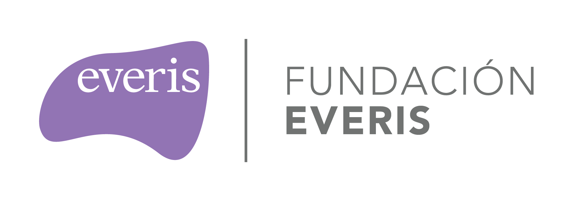 everis-fundacion-logo