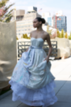 """<img src=""""evening gown.png"""" alt=""""model wears a long strappy evening gown with layers of cancan on a rooftop in New York"""">"""