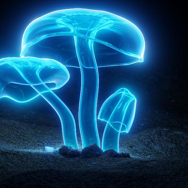 GlowShrooms3.png