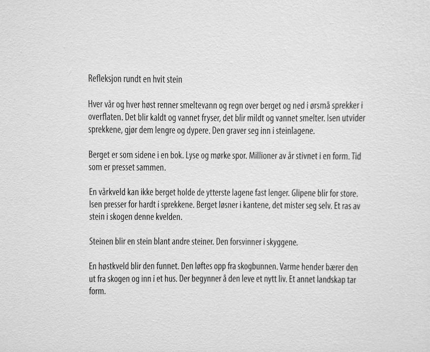 Tekst fra Marte Huke