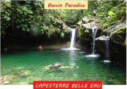 Bassin_Paradise_à_Capesterre_Belle_Eau