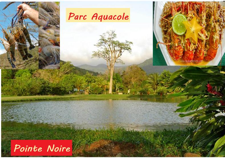Parc_Aquacole_à_Pointe_Noire
