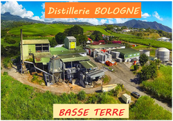 Distillerie_BOLOGNE_à_Basse_Terre