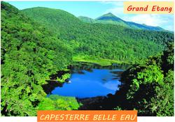 Grand_Etang_à_Capesterre_Belle_Eau