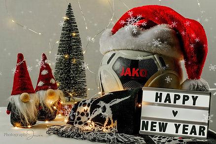 FB-gelukkig-nieuwjaar-Zwaluw-Wiemismeer.