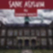 Sane Asylum pic.JPG