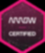 AR982_HRES-ARROWS-300x350.png