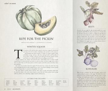 Edible Sarasota Magazine Illustrations