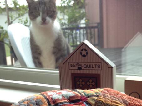 Furry Overseer of Quilt Making