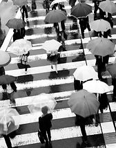 People with umbrellas crossing a street