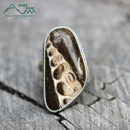 California Marine Fossils set in Sterling Silver Statement Ring - Size 7
