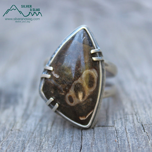 California Marine Fossils in Sterling Silver Statement Ring - Size 6