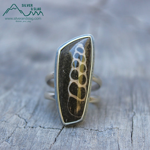 California Marine Fossils in Sterling Silver Statement Ring - Size 9