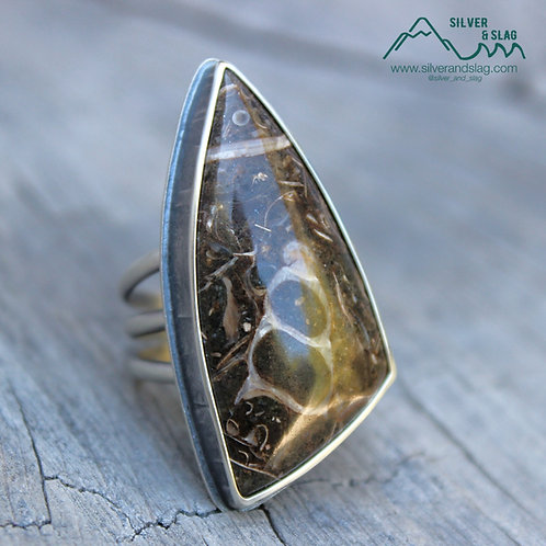 California Marine Fossils in Sterling Silver Statement Ring - Size 7
