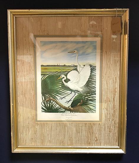 """American Egrets with Charleston Skyline"" Framed Print"