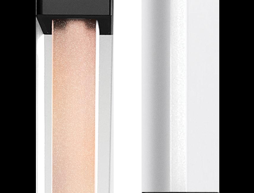 Shiny Lips Gloss