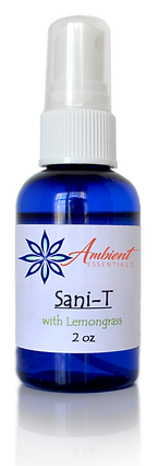Sanity Ambient Logo Store.png