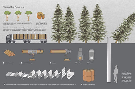Infografik Papier.jpg
